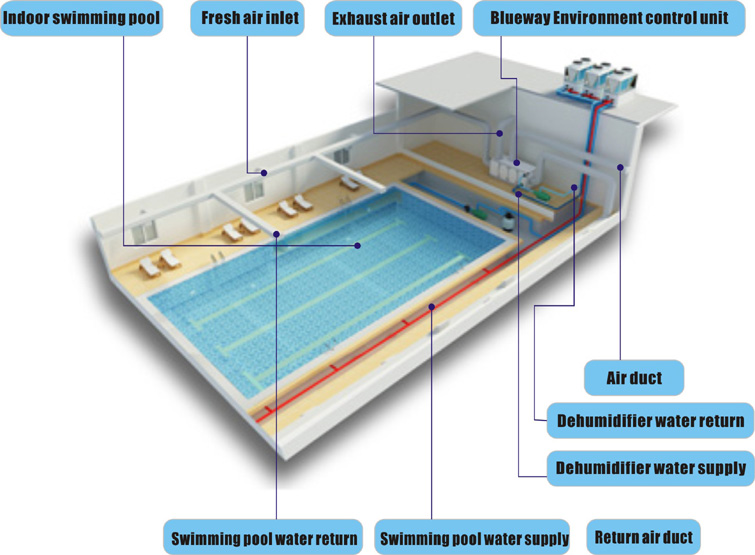 Indoor Swimming Pool Environment Control System Supplier